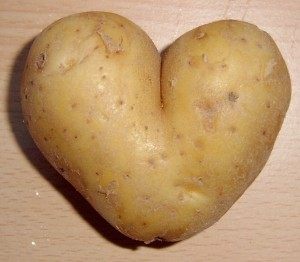 potato-love