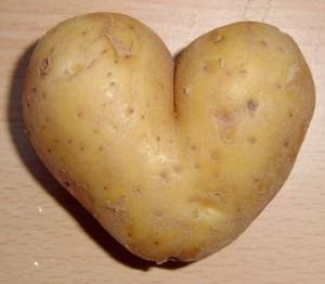 potato-love